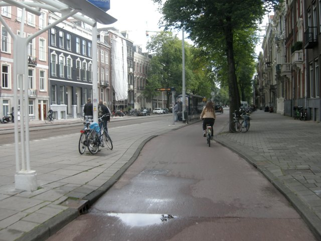 This Dutch lady has 'surrendered' the right to cycle with trams, taxis and buses in the middle of this road