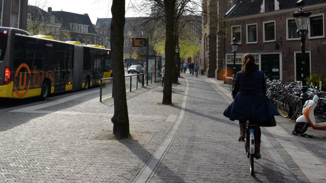 Technically, a 'bus stop bypass'. Very easy to cross this cycle track, to access the bus stop