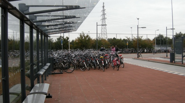 Hundreds of bikes at a bus station in Assen