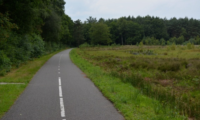 Cycle path along an 80kph A-road, east of Assen. The road is on the left-hand side, behind the trees.